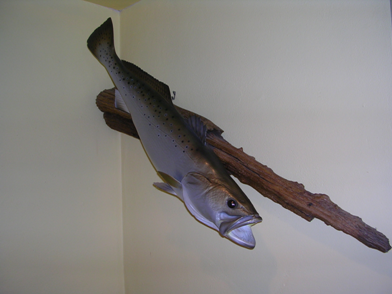 Trout :: Man Room Decoration