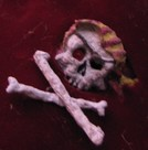 close up on skull and cross bones embroidered image via Barry Morgan