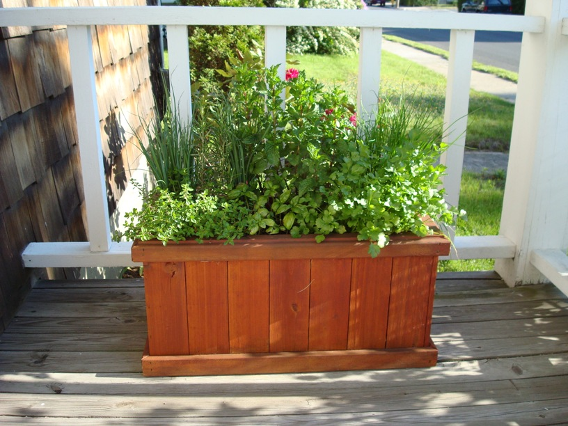 A small container herb garden is attractive, compact, and easily moved about