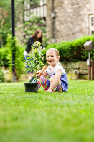Little Girl With Potted Plant Green Lawn