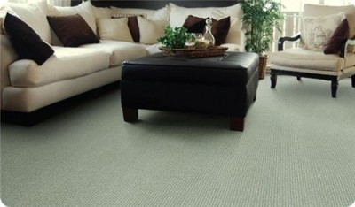 Carpeted Living Room via ProSource Wholesale Floors