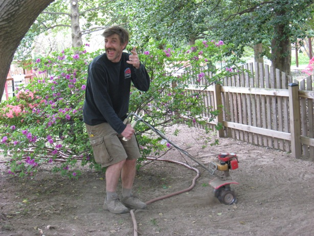 Working with a Small RotoTiller under a Large Maple