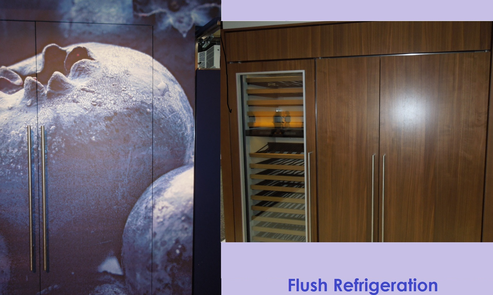 True Flush Refrigerator from Sub-Zero Wolf