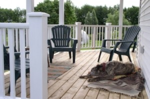 White Rail Green Plastic Chairs on a Porch with a Dog via Black & Deckers Complete Guide to Porches Ad