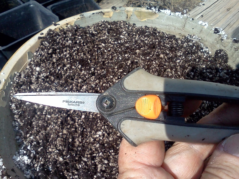 pruners and soil mix via Donna Dixson
