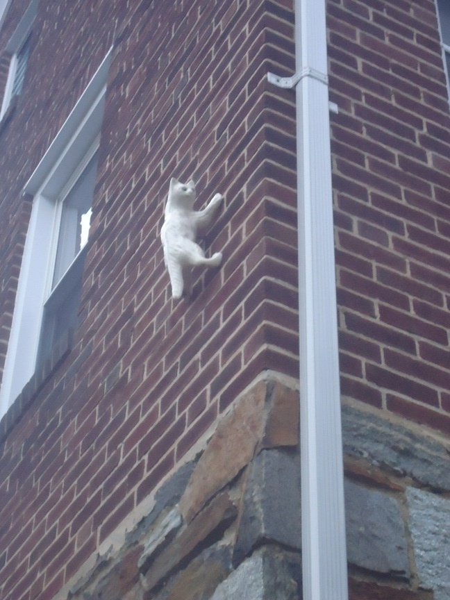 Tiny Home Designs: Mrs Moxie & Her New Ceramic Climbing Cat :: Building Moxie