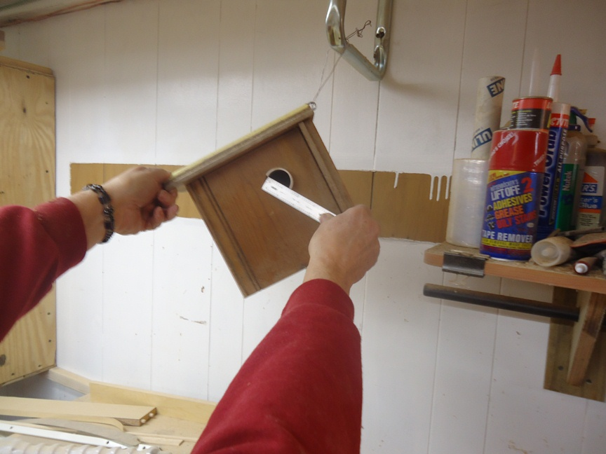 one and half inch size for birdhouse hole