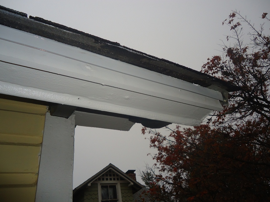 replaced fascia drip edge