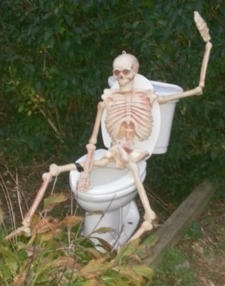 skeleton on a toilet