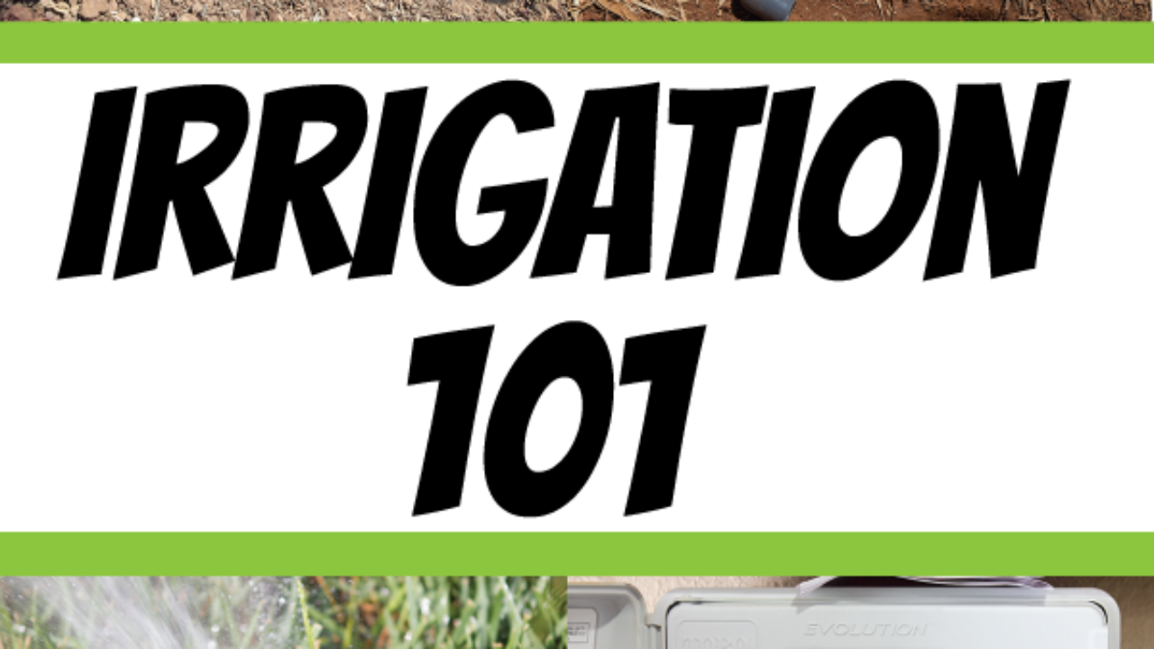 Irrigation 101: The Basics of a Residential Irrigation System