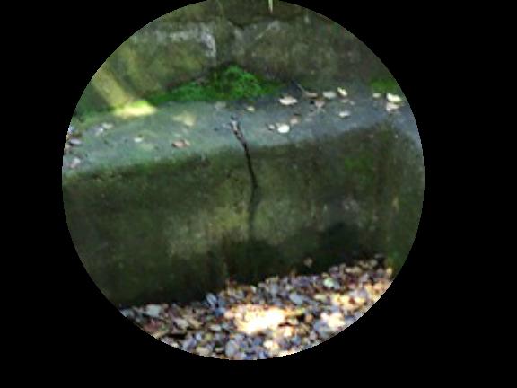 Large Crack Concrete Pond